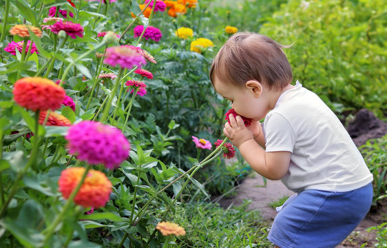 Cute little baby boy enjoying smelling flower with closed eyes. Agritourism. Slow living concept.  Summer countryside lifestyle