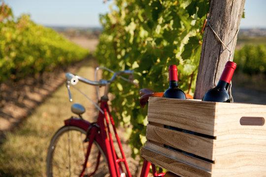 Vélo et bouteille de vin dans les vigne en France.