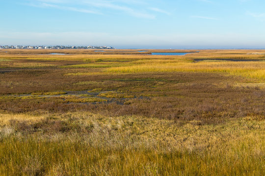 Looking over grassy wetlands at Bay Side of Galveston Island with Housing Area in BG