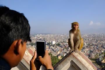 A man taking a photo with a smartphone for monkey makak rezus (macaca mulatta), next to Swayambhunath stupa (Monkey Temple) and panorama of Kathmandu in background. Kathmandu, Nepal