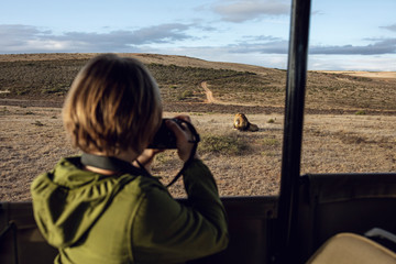 Back view of girl taking photo of lion, Inverdoorn Game Reserve