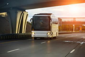 white tourist bus Fotomurales