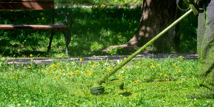 grass care with brush cutter. working with professional grade garden tool in the park. using trimmer line to mow grass on a sunny day in spring. pieces of weeds thrown apart in the air