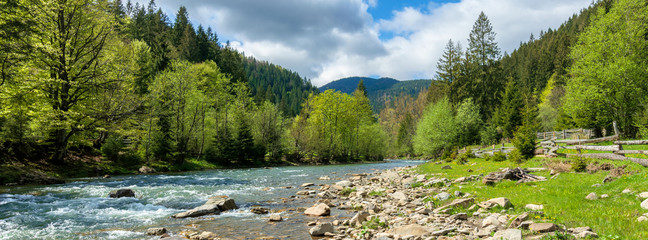 Aluminium Prints Forest river river in mountains. wonderful springtime scenery of carpathian countryside. blue green water among forest and rocky shore. wooden fence on the river bank. sunny day with clouds on the sky
