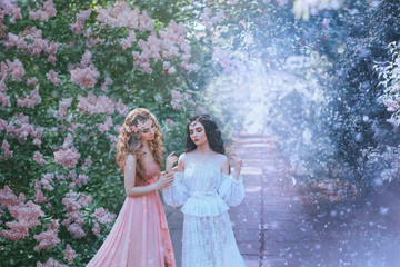sexy portrait two women type spring and winter, perfect skin gentle makeup. Long curly hair brunette and blonde lady. Jewelry tiara wreath diadem. Vintage lace outfits. frozen flower garden snow