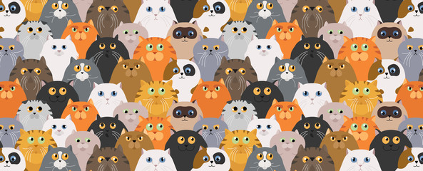 Garden Poster Pattern Cat poster. Cartoon cat characters seamless pattern. Different cat`s poses and emotions set. Flat color simple style design