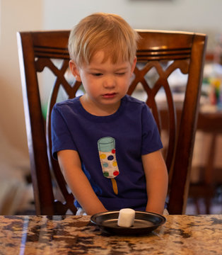 Young child sitting at a table waiting patiently for a marshmallow