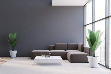 Gray living room interior with brown sofa