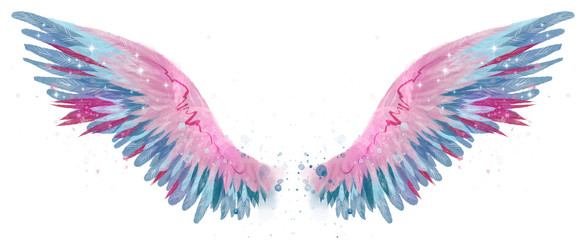 Beautiful magic watercolor blue pink wings