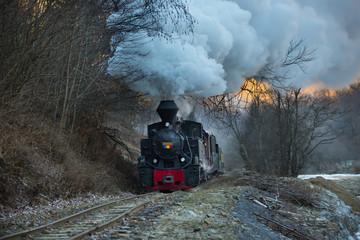 Papiers peints Voies ferrées Steam train puffing along the tracks