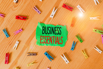 Conceptual hand writing showing Business Essentials. Concept meaning important key ideas to improve...