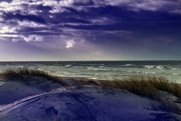Wall Mural - Cold day by Baltic sea coast.