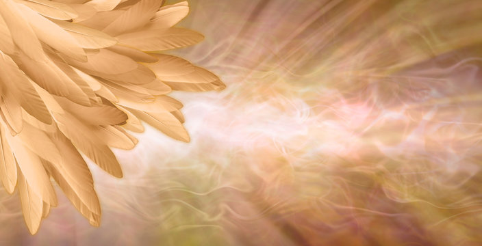 Golden Angel Feather Message Banner Background - a pile of random long golden feathers in left corner against a gaseous flowing energy field shaped like a giant feather with copy space