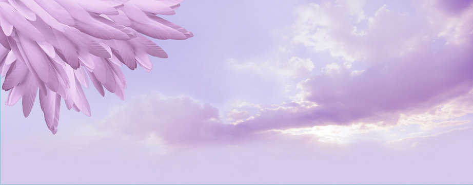 Angel feather message background banner - a pile of random long lilac feathers in left corner against a lilac blue romantic sky background with copy space