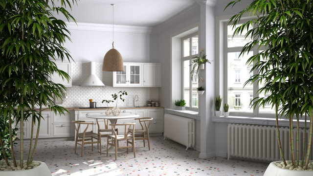 Zen interior with potted bamboo plant, natural interior design concept, retro vintage kitchen with marble floor and windows, dining room, , table with wooden chairs, architecture idea