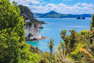 Poster Cathedral Cove beautiful scenery on the way to Cathedral Cove on Coromandel Peninsula, North Island, New Zealand