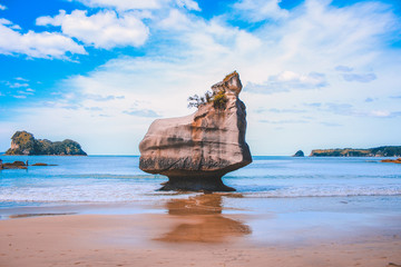 Cathedral Cove on the Coromandel Peninsula, North Island, New Zealand