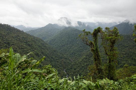 Panoramic view of Braulio Carrillo park in Costa Rica