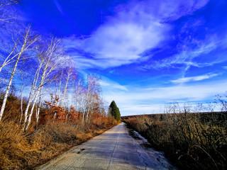 Foto op Aluminium Donkerblauw sky