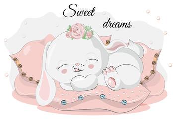 bunny on pillows