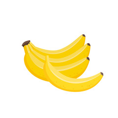 Vector illustration of bunches of fresh banana isolated on white