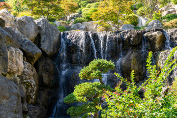 Recess Fitting Gray traffic Beautiful landscape with bonsai pine tree, many evergreen plants and waterfall with large stones wall in park Aivazovsky, Partenit. Crimea.