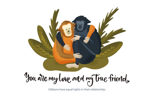 Happy valentine day vector textured gibbon animal card in a flat style with quote and real facts about love. Romantic monkey illustration.