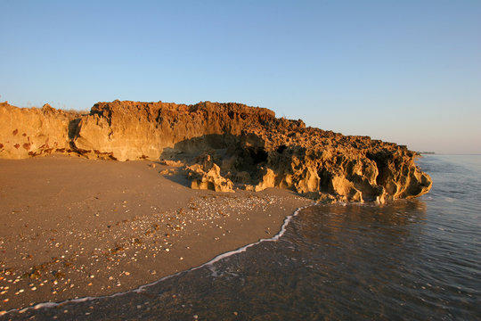 Anastasia limestone outcropping in Blowing Rocks Preserve on Jupiter Island, Florida on clear cloudless morning at low tide.