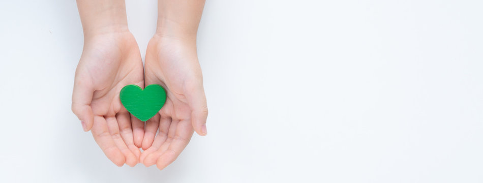 Hands of a young child holding a beautiful green heart with care showing a concept of Environmental friendly, Sustainable living, Eco day, Clean energy, Vegan. Isolated top view on white background