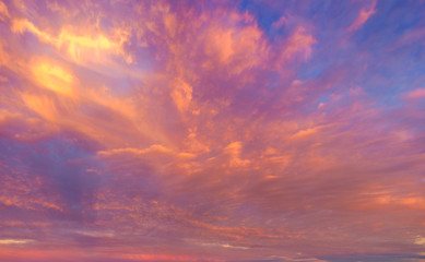 Wall Murals Salmon beautifully lit clouds during sunrise