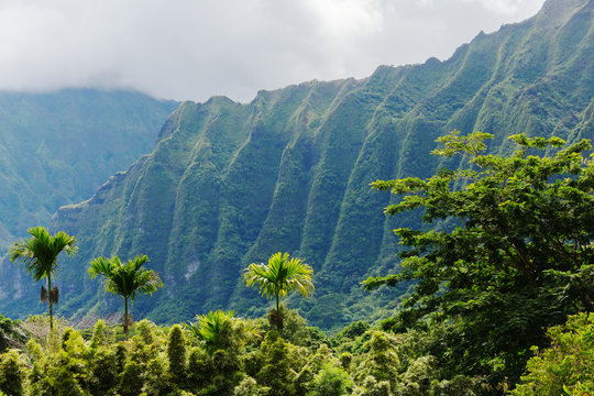 Botanical Garden at Kaneohe, Oahu, Hawaii