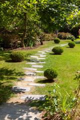 Jardin - allée pavée entourée de buis et pelouse
