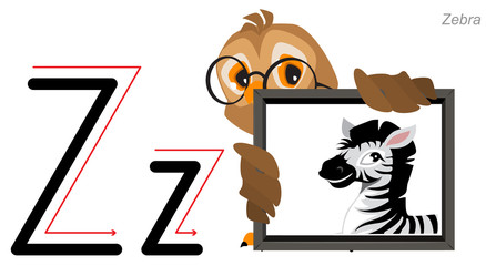Letter Z of the English alphabet. An owl holds an image of zebra