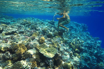 Wall Mural - Sailor walks barefoot over corals