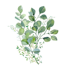 Watercolor hand painted bouquet silver dollar eucalyptus and green plants. Frolar branches and leaves isolated on white background.  Greenery illustration for design, card, poster, banner  - fototapety na wymiar