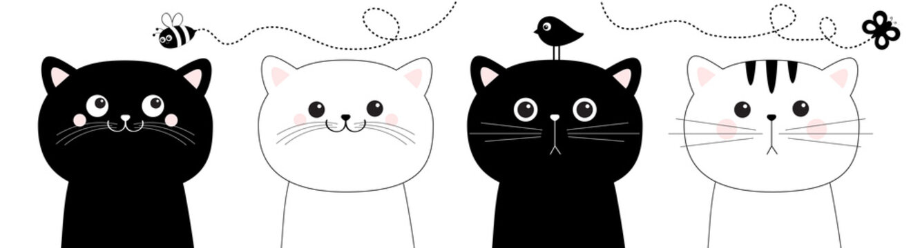 Cat set . Black White head face line contour silhouette icon. Flying bee, bird, butterfly insect. Funny kawaii doodle animal. Cute cartoon funny character. Pet collection. Flat design Baby background.