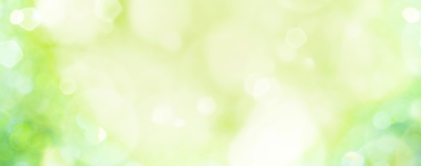 Spring background -  abstract banner - green blurred bokeh lights - Fotobehang