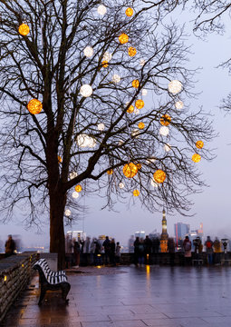 Decorated bare tree in Tallinn, Estonia