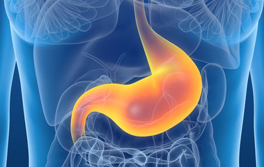 Gastritis, painful stomach, medically 3D illustration