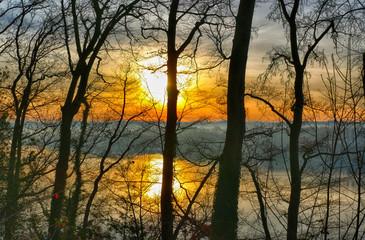 Sonnenaufgang im Wald über dem Baldeneysee