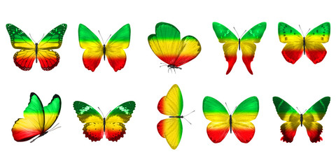 Foto auf Leinwand Schmetterlinge im Grunge Butterfly Set Isolated On A White Background. with wings of yellow, green, red. Rasta color.