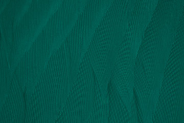 Wall Mural - Beautiful dark green viridian vintage color trends feather texture background