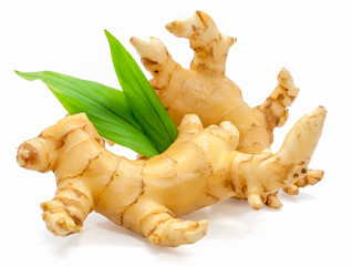 Ginger spice root isolated on white backgrond