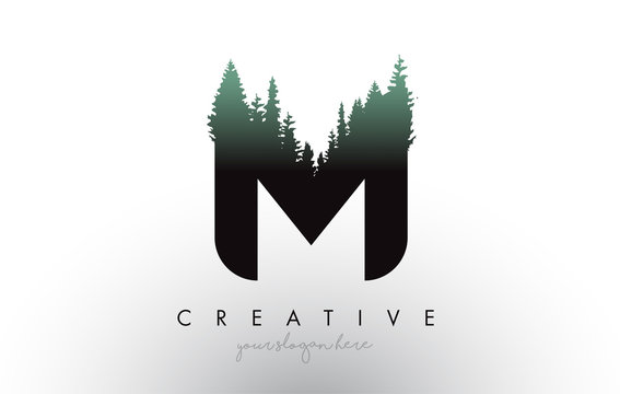 Creative M Letter Logo Idea With Pine Forest Trees. Letter M Design With Pine Tree on Top