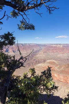 Wanderausflug in den Grand Canyone USA
