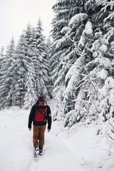 Fototapete - Couple hiking along a snow covered path in the forest