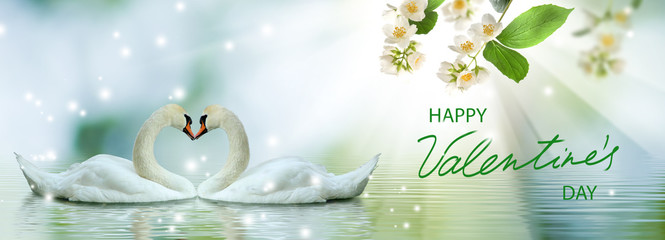 Papiers peints Cygne Happy Valentine's Day with two swans in love who with their necks form a heart shape