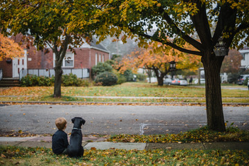 A little boy and his puppy sit on the grass and look at the leaves.