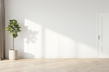 Plant against a white wall mockup. White wall mockup with brown curtain, plant and wood floor. 3D...
