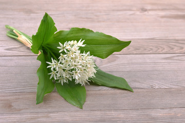 Wild garlic on wooden table.